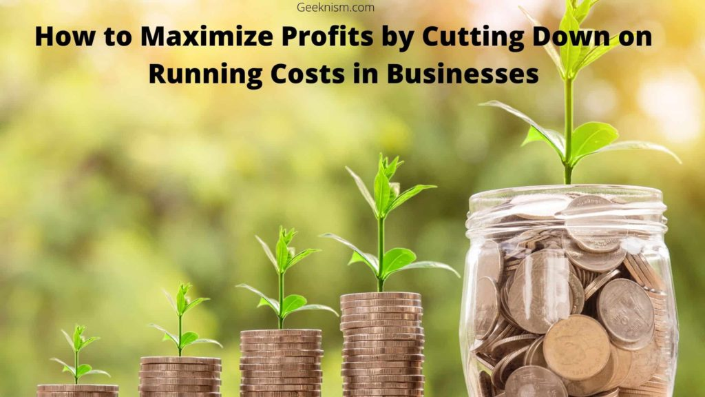How to Maximize Profits by Cutting Down on Running Costs in Businesses