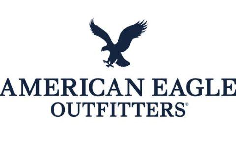 American Eagle Survey