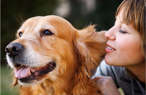 Best Apps For Dog Parents